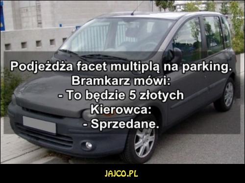 Kierowca Multipli