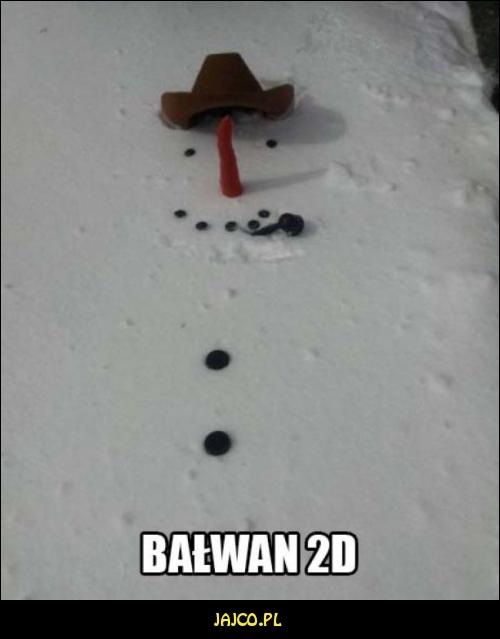Bałwan 2D