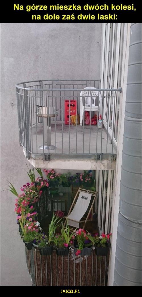 Mieszkanie kolesi i lasek